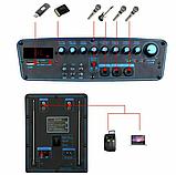 Портативная акустическая система Temeisheng SL 15-01 с 2 микрофонами, фото 3