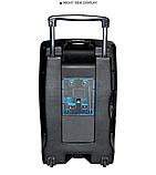 Портативная акустическая система Temeisheng SL 15-01 с 2 микрофонами, фото 4
