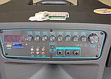 Портативная акустическая система Temeisheng SL 15-01 с 2 микрофонами, фото 5