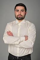 Мужская рубашка классическая, фото 3