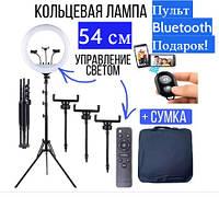 Кольцевая лампа 54 см на штативе RL-21 / 65W + пульт блютуз + сумка