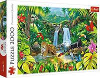 Пазл 2000 Trefl Тропічний ліс (Tropical Forest)