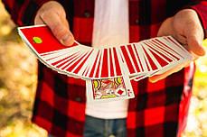 Карты игральные | Slicers by OPC, фото 2