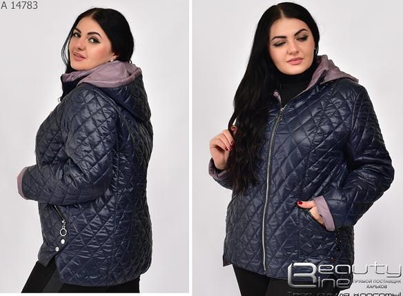 Демисезонная женская куртка цвет синий большой размер Размеры: 50.52.54.56.58.60.62., фото 2
