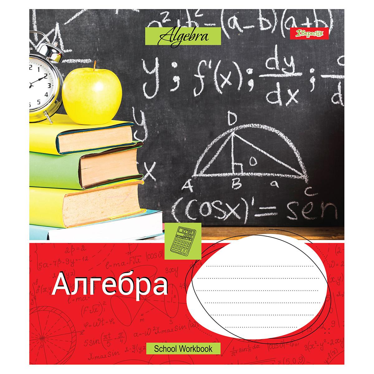 Тетрадь для записей А5/48 кл. 1В АЛГЕБРА (Workbook) выб.гибрид.лак