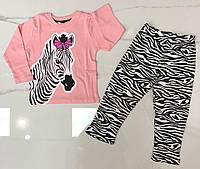 Пижама трикотажная детская Зебра для девочки 3-6 лет,цвет уточняйте при заказе, фото 1