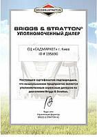 САДМАРКЕТ уполномоченный дилер BRIGGS & STRATTON