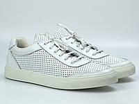 Мужские летние кроссовки белые кожаные кеды обувь больших размеров Rosso Avangard Ada White PerfLeath TPR BS, фото 1