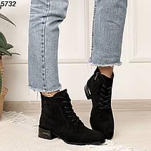 Ботинки женские замшевые на низком каблуке, фото 2
