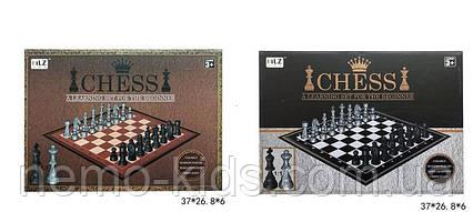 Шахматы в коробке, шахматы для детей. Настольная игра
