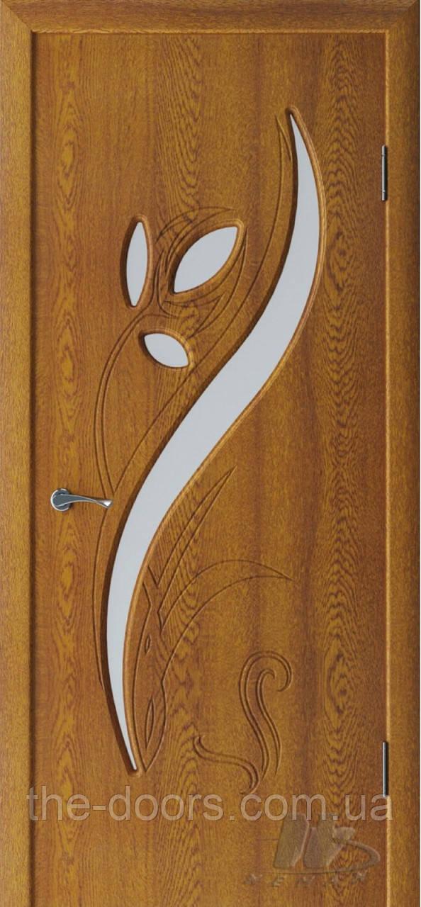 Двери межкомнатные Неман Тюльпан