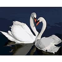 Картина по номерам Strateg Лебеди в воде, 40х50 см