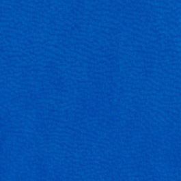 голубой ежедневник