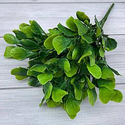 Букет капуста зеленая 35 см