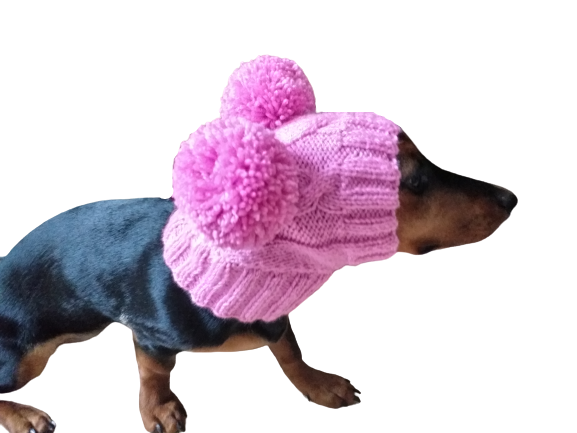 Одяг для собаки шапка з двома помпонами