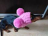 Одяг для собаки шапка з двома помпонами, фото 3