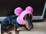 Одяг для собаки шапка з двома помпонами, фото 2