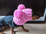 Одяг для собаки шапка з двома помпонами, фото 4