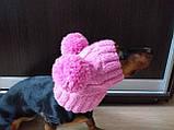 Одяг для собаки шапка з двома помпонами, фото 5
