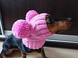 Одяг для собаки шапка з двома помпонами, фото 6