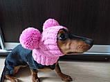 Одяг для собаки шапка з двома помпонами, фото 7