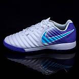 Сороконіжки Nike Tiempo X Legend VII Pro TF (39-45), фото 7
