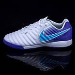 Сороконожки Nike Tiempo X Legend VII Pro TF (39-45), фото 7