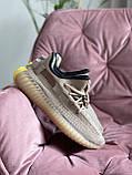Модные женские кроссовки Adidas Yeezy Boost 350 v2,текстиль,бежевые, фото 3