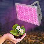 Фитосветильник светодиодный FLAMINGO 30W IP65