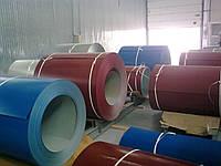 Рулон с полимерным покрытием RAL-9005