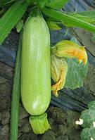 Семена - Кабачок Кавилли f1 (Нунемс,Голландия) 5шт
