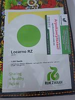 Салат типу Лолло Біонда) ЛОКАРНО / LOCARNO RZ «Rijk Zwaan», 1000 насіння, насіння салату