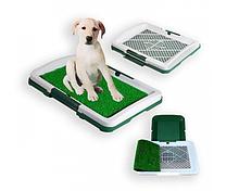 Туалет для собак Puppy Potty Pad, размеры: 47х34х6 см