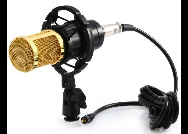 Микрофон конденсаторный Protech BM-800 со звуковой картой V8X pro и пантографом с ветрозащитой
