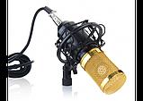 Микрофон конденсаторный Protech BM-800 со звуковой картой V8X pro и пантографом с ветрозащитой, фото 3