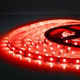 Червона LED стрічка SMD 2835/60 (IP20) 12V RED