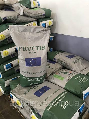 Семена кукурузы Фруктис ФАО 330, фото 2