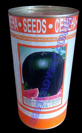 Семена арбуза «Сахарный Малыш» 500 г, инкрустированные (Vitas), фото 2