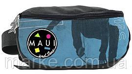 Сумка на пояс, бананка Paso MAUJ-510 синій з чорним