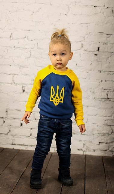 Детский теплый трикотажный свитшот (худи, толстовка, реглан, кофта) Украина (593)