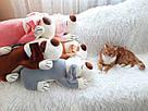 Іграшка-плед-подушка  Велика собака🐶🐾 розмір іграшки 70х35, фото 2