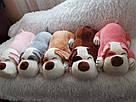 Іграшка-плед-подушка  Велика собака🐶🐾 розмір іграшки 70х35, фото 10