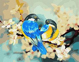 Картина за Номерами Красиві пташки на квітучої яблуні 40х50см RainbowArt