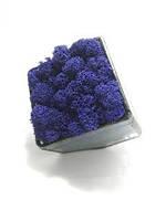 Флорариум кашпо Моссариум со стабилизированным мхом синий 15 см, фото 2