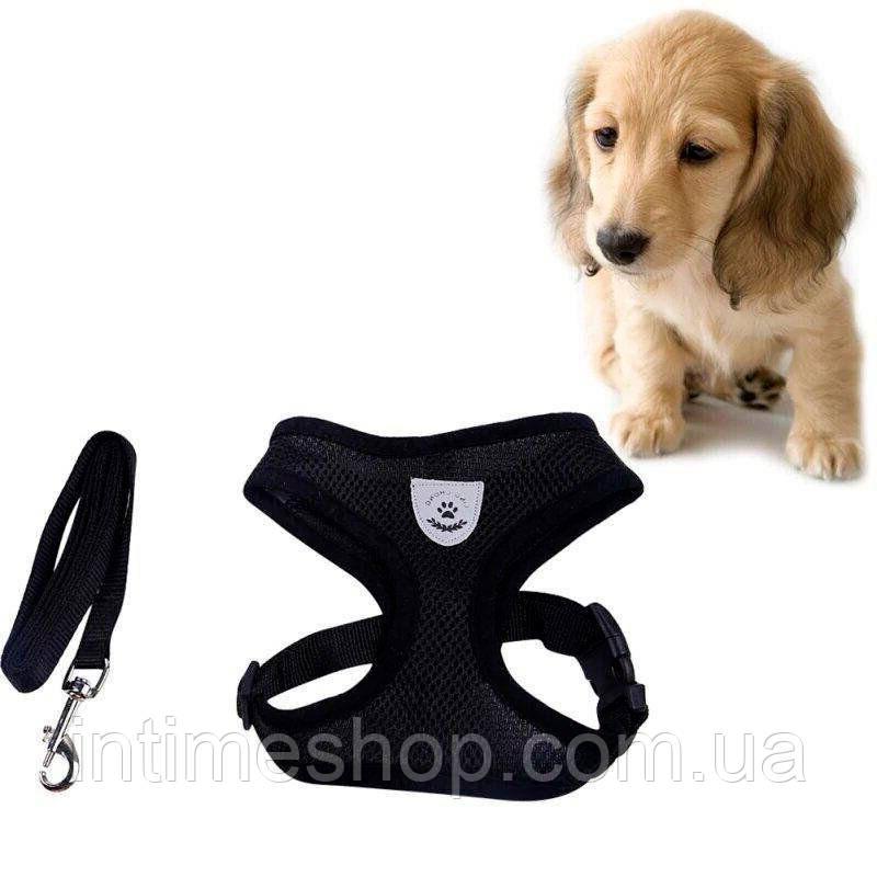 Шлея для собак мелких пород L (4-6 кг) шлейка поводок для выгула кошек (кошки), собак (собаки) (TI)