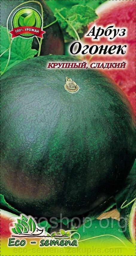 Семена Арбуз Огонёк / 3 г