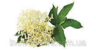 Ароматизатор жидкий цветок бузины 1кг/флакон