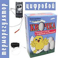 Терморегулятор для інкубатора Квочка (цифровий), фото 1