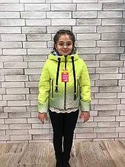Весняна куртка веселка на дівчинку Жовта