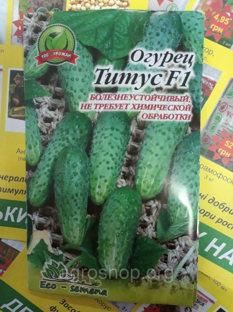 Семена Огурец Титус F1, 100 шт